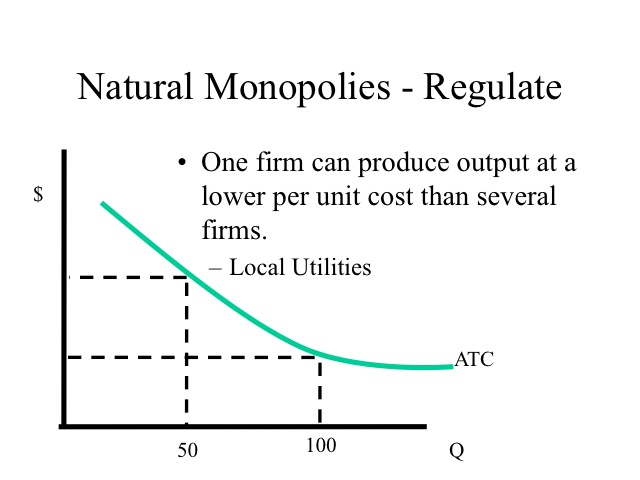 natural monopoly A natural monopoly is a market where a single seller can provide the output because of its size a natural monopolist can produce the entire output for the.