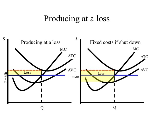 Total variable cost graph