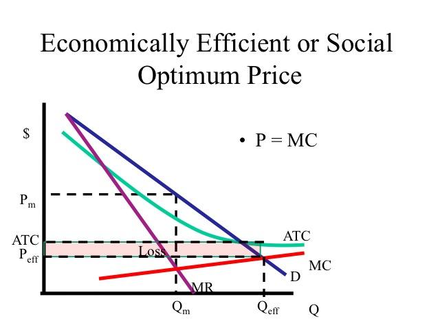 The Study Economics fo...
